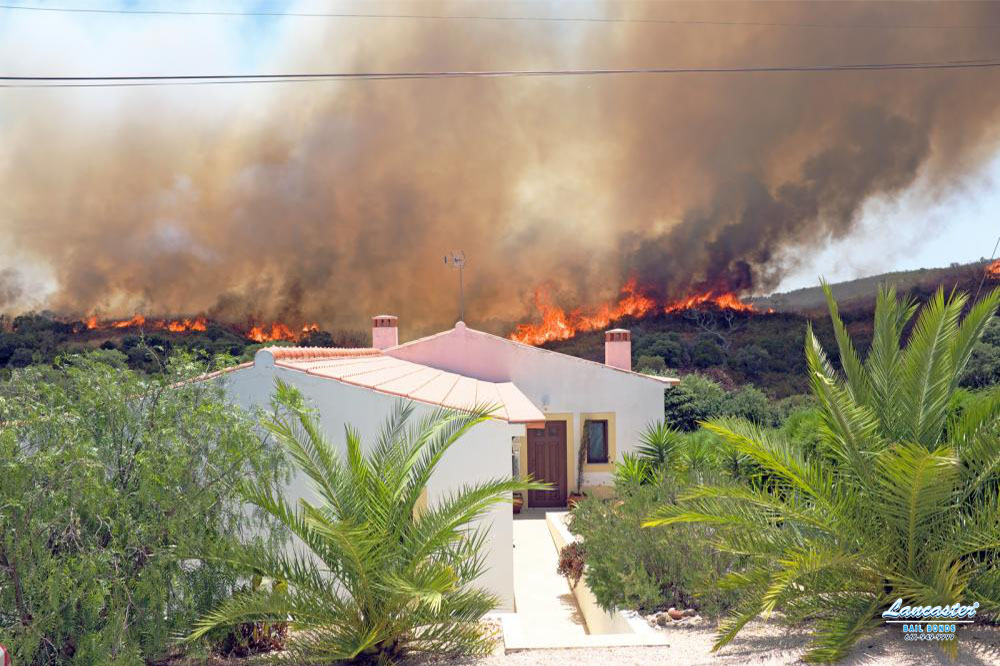 The Dangers of Wildfires